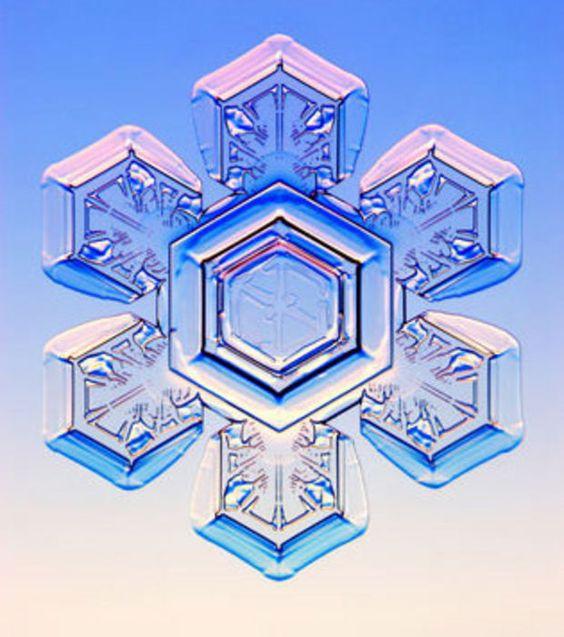 hexagram in nature