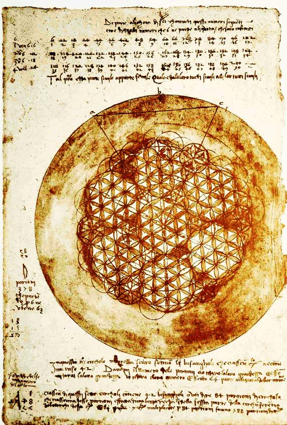 flower of life by da Vinci