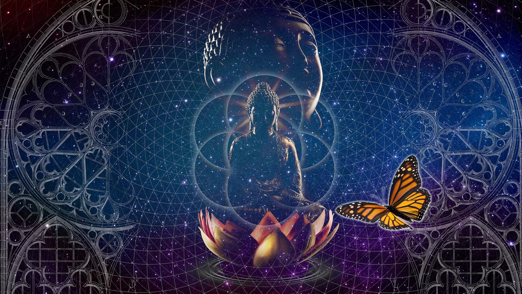 unified consciousness field